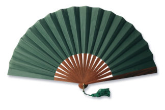 eventail-havanana-vert-exotique-accessoire-mode
